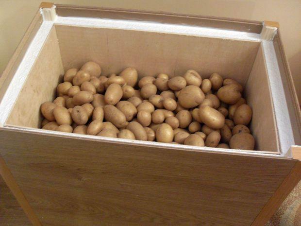 Как хранить картофель в квартире, на балконе зимой