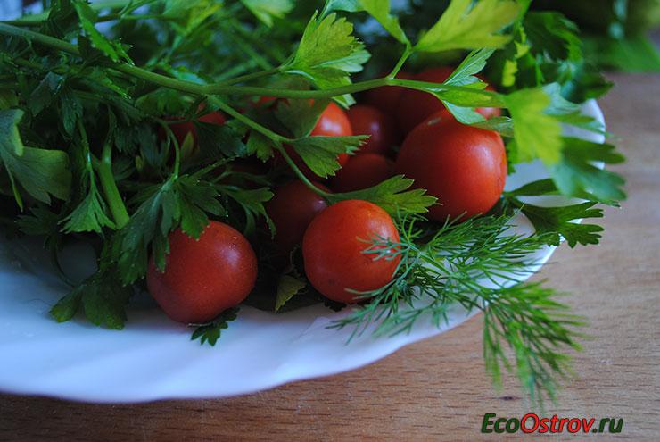Лечебные свойства петрушки, польза для здоровья