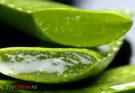 Лечебные свойства алоэ и сока, польза и вред